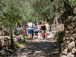 Singles walking on Mallorca